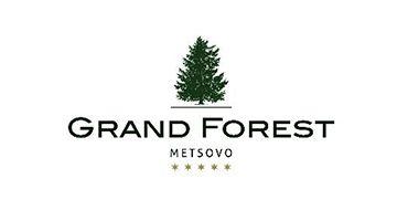 ΞΕΝΟΔΟΧΕΙΟ GRAND FOREST METSOVO