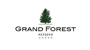 GRAND FOREST METSOVO HOTEL